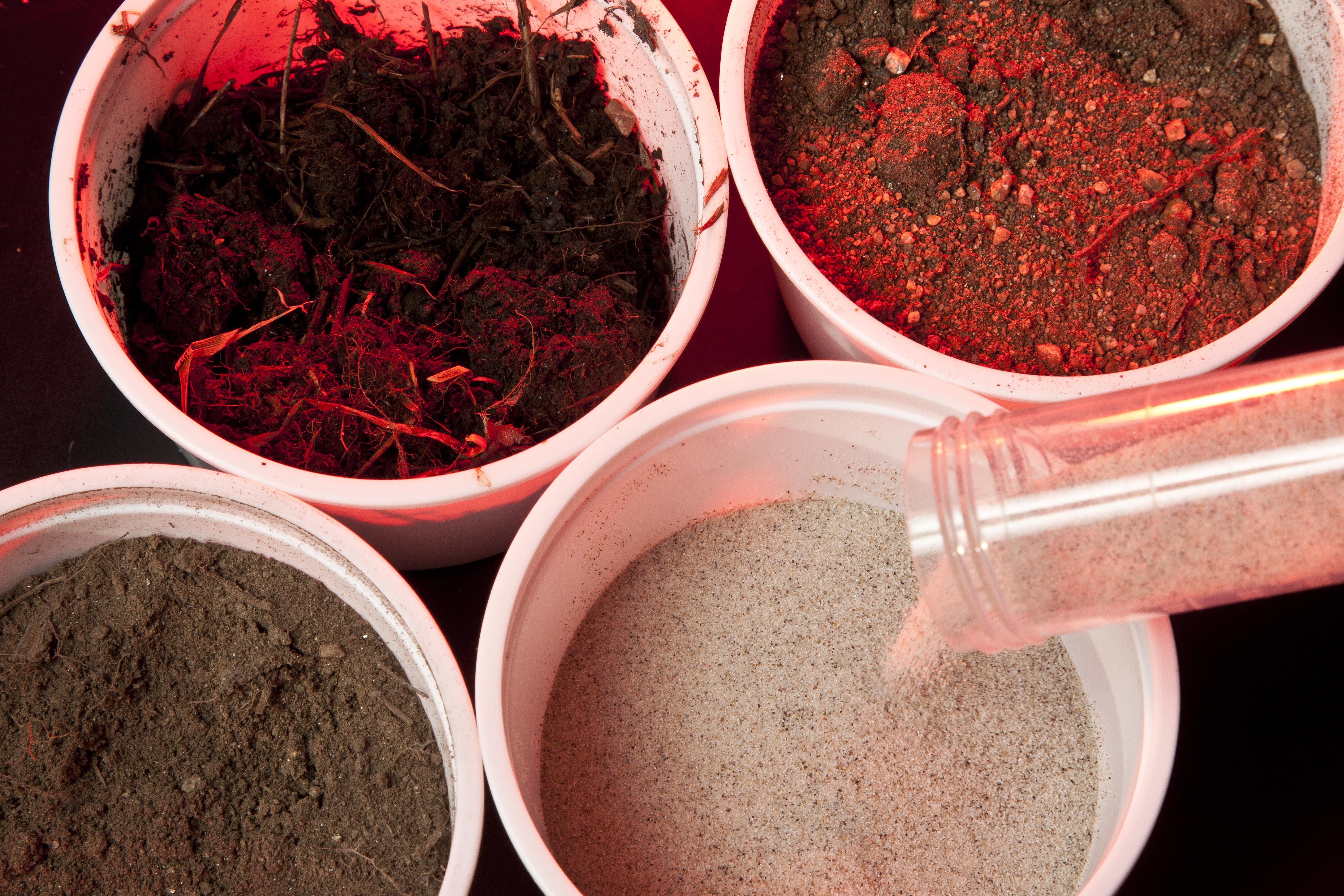 Various soil samples