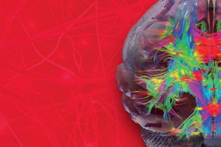 Unraveling Secrets of Brain, Biology and Behavior