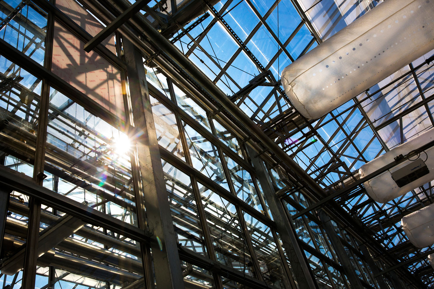 Sun shines into Greenhouse Innovation Center
