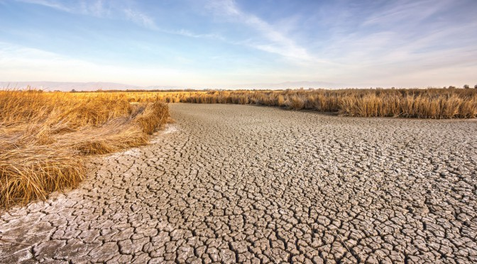 Drought_173917970