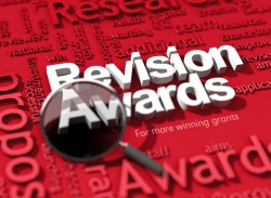 revisionawards2